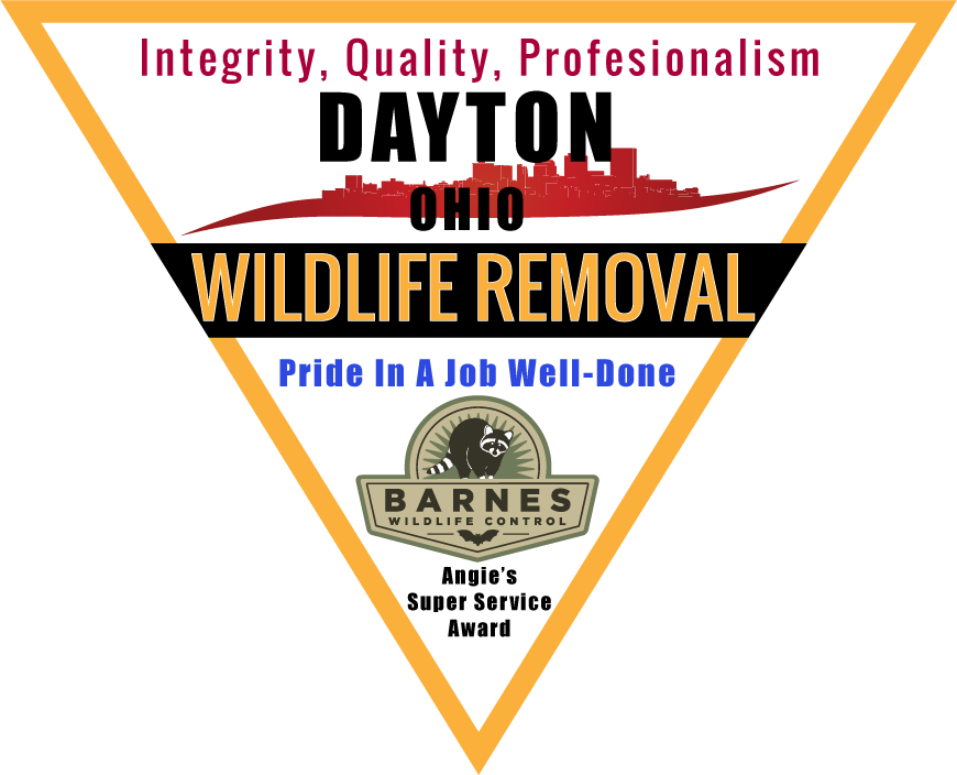 Wildlife Removal Dayton Ohio